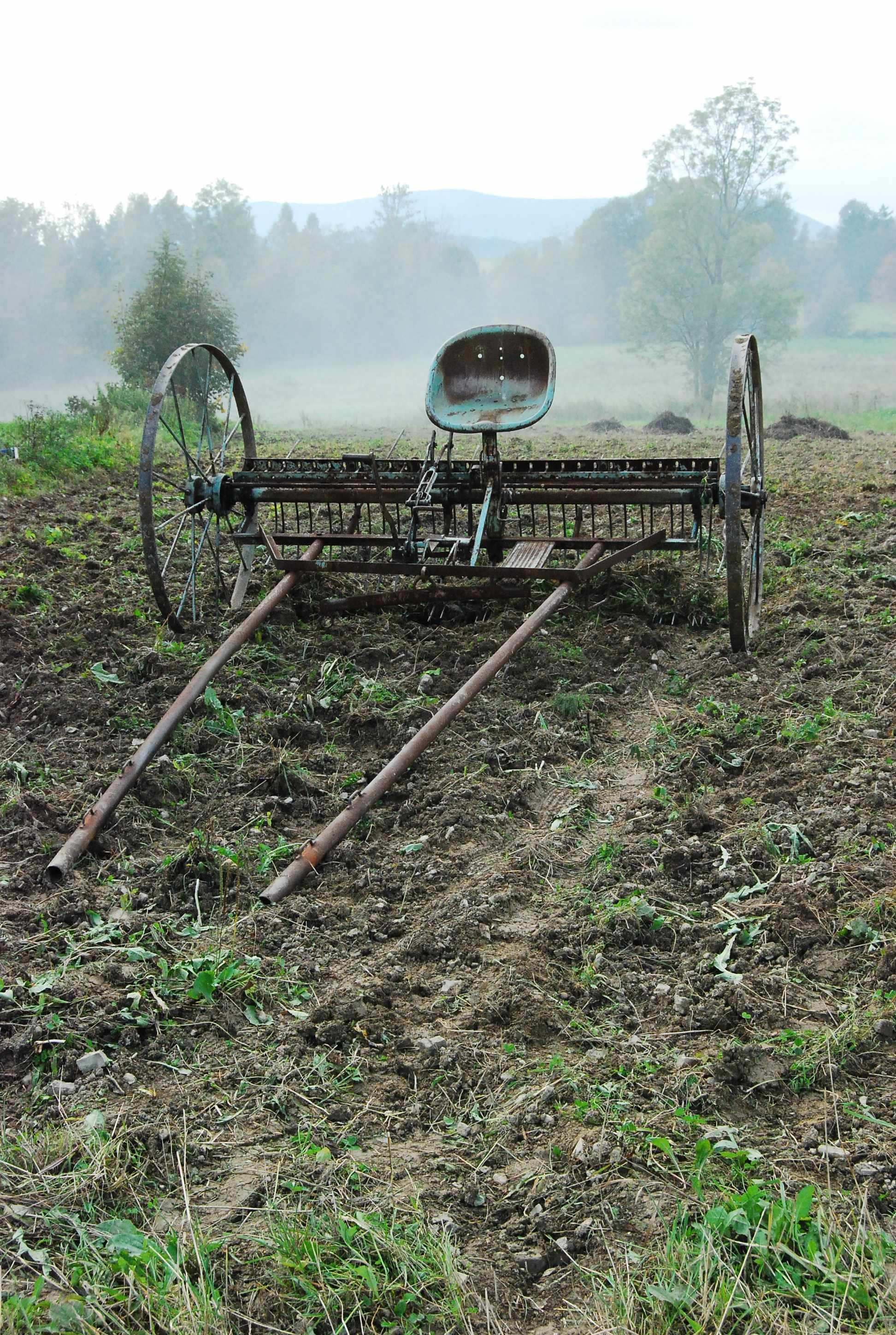 An abandoned horse-drawn plough in a village in southern Poland in 2010