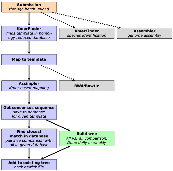 Workflow from an early stage of development