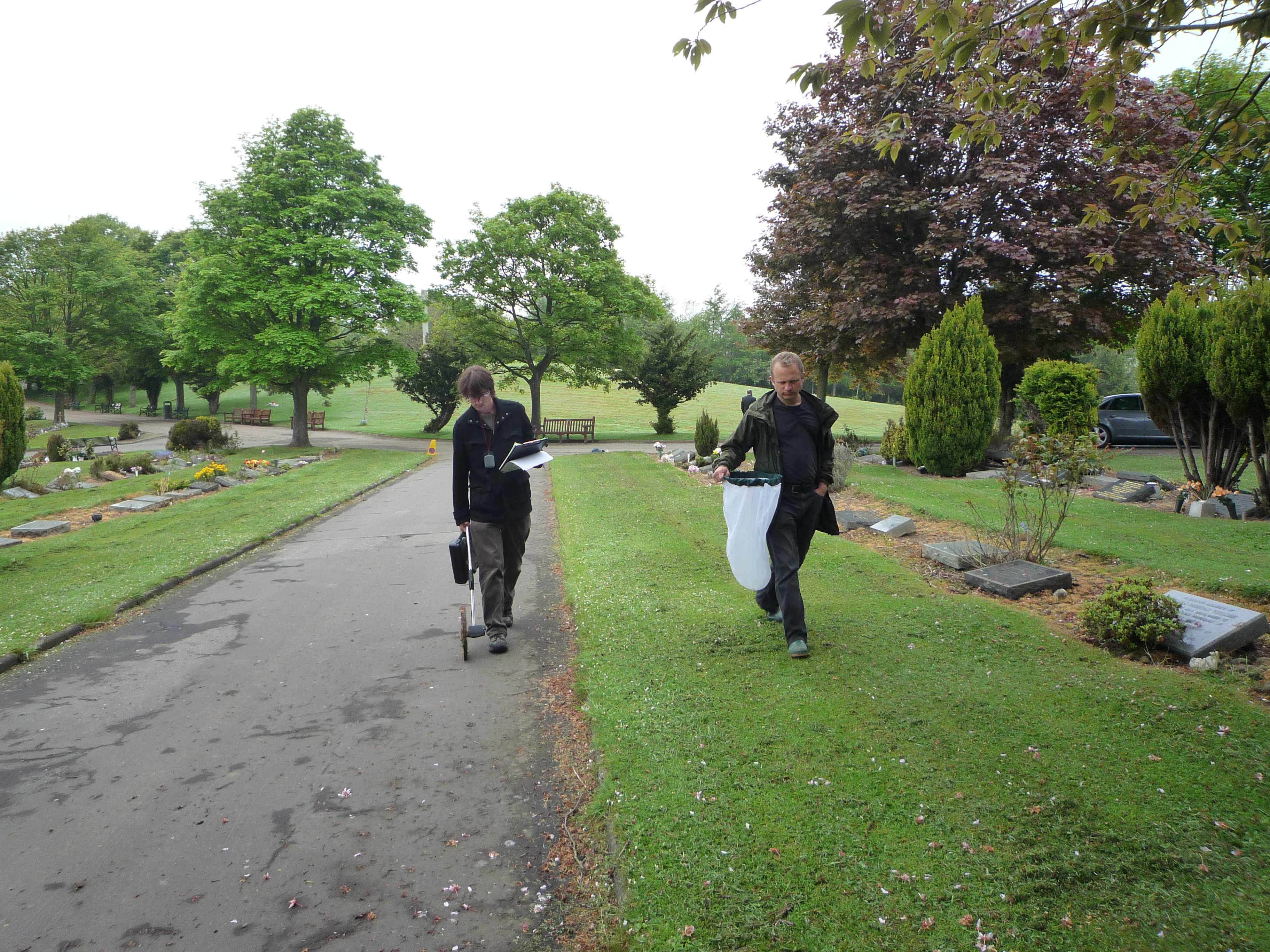 Sampling a cemetery for pollinators in Edinburgh (Photo: K. Baldock)